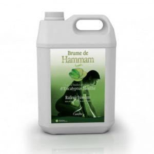 Aceites esenciales Brume de Hammam 5L - EUCALIPTO/MENTA